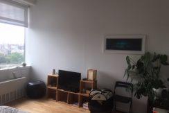 Studio in Williamsburg 4
